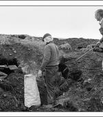 Postcard of striking miners picking coal on spoil tips near Mardy Colliery in February 1985.